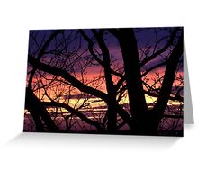 bonnie winter sunset no.3 Greeting Card