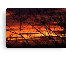 bonnie winter sunset no.2 Canvas Print