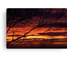 bonnie winter sunset no.1 Canvas Print