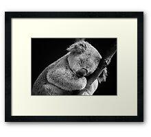 Wake Me Later - Sleeping Koala Framed Print