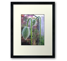 too weight to hold.. Framed Print