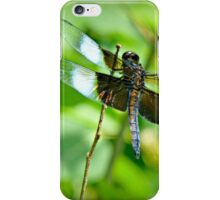 ADVICE FROM A DRAGONFLY iPhone Case/Skin