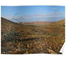 Arid Country Poster