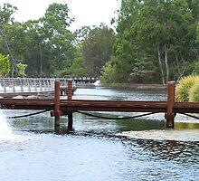 Bridge over Botanical Gardens  by Virginia McGowan