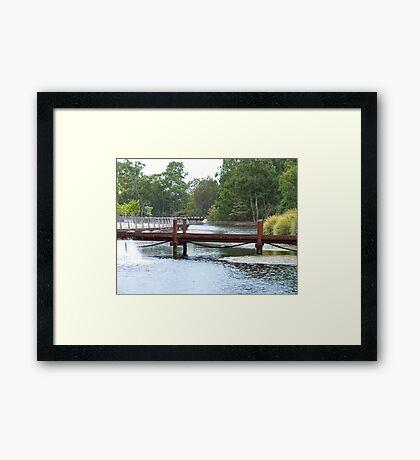 Bridge over Botanical Gardens  Framed Print