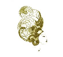 Asian Girls- Kissaeng :Pseudo Pompous Gold Photographic Print