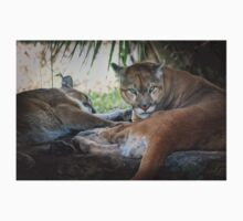 Facing Extinction - Florida Panther Kids Clothes