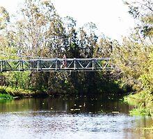 Bridge at Laidley  Gardens Queensland  by Virginia McGowan