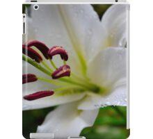 Lily Study3 iPad Case/Skin