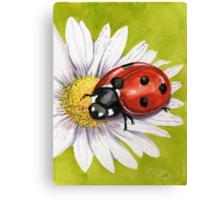 Ladybird on Daisy Canvas Print