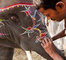 Elephant. Sonepur Mela by Claude  Renault