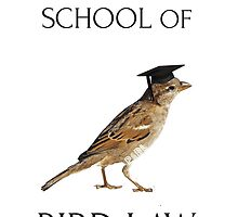 Philadelphia School of Bird Law by EdgarCat