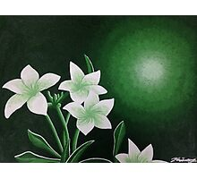 Green Monochromatic Flower Painting Photographic Print