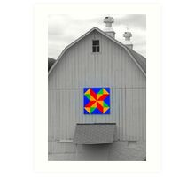 BARN BEAUTY Art Print