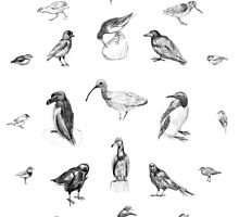 Manx Fauna - (British) Birds by Vicky Webb