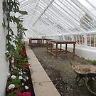 Renovated Glasshouse - Abbey Gardens, Melrose by Babz Runcie