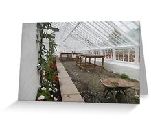 Renovated Glasshouse - Abbey Gardens, Melrose Greeting Card