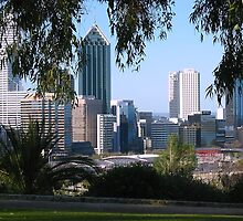 Perth from Kings Park by Stephen Horton