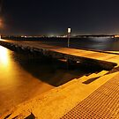 swan river at night by dmaxwell