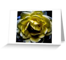 Fullness of Sunshine Greeting Card