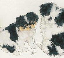 Japanese Chin Puppies by BarbBarcikKeith