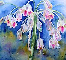Quiet Elegance by Ruth S Harris