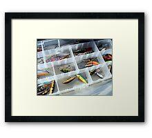 Rapala Framed Print
