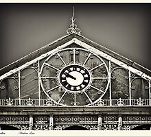 The Conservatory by inkedsandra