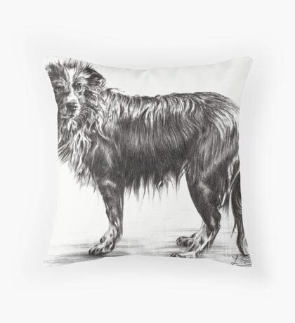 Soaked Throw Pillow