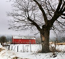 Winter in the Country by Nadya Johnson