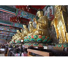 All the Buddhas Photographic Print