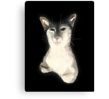 Wise Cat Canvas Print