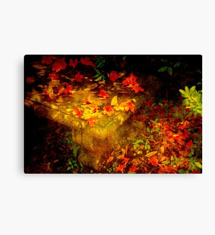 Spring or Autumn? Canvas Print