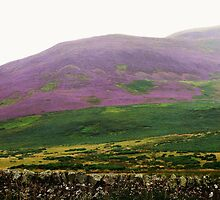 Scotland: Between Edinburgh & Heaven by artwhiz47