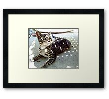Hello, Kitty Framed Print