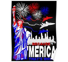 Because 'Merica, That's Why T-Shirt design Poster
