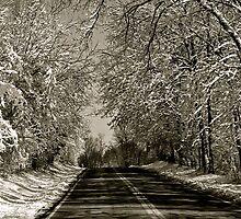 Meeker Road by ashley-dawn