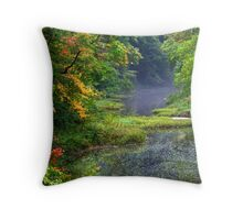 stream in the forest Throw Pillow