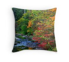 Scenic Autumn landscape Throw Pillow