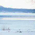 Lake Monroe Winter by ckroeger