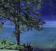 Mystery Tree by Susanne Van Hulst