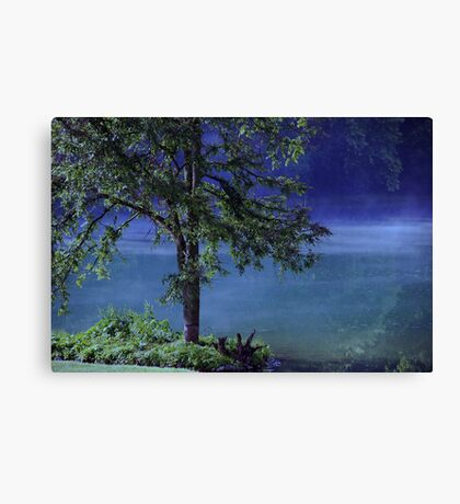 Mystery Tree Canvas Print
