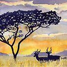 Impala by ian osborne