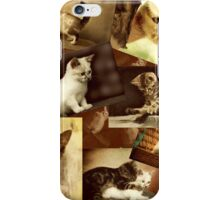 Cute Kittens at play - Collage iPhone Case/Skin