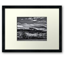 Iced winter candy tops Framed Print