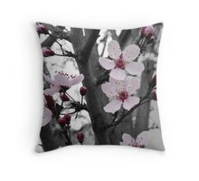 Plum Blossoms~ First Sign of Spring Throw Pillow