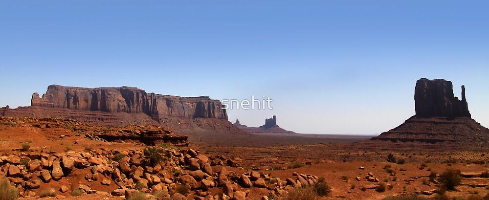 Desert landscape in the Arizona by snehit