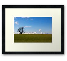 Simplicity In Nature Framed Print