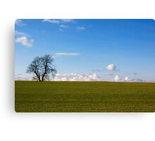 Simplicity In Nature Canvas Print