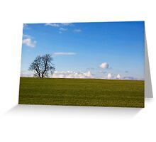 Simplicity In Nature Greeting Card